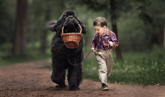 Büyük Köpekler ve Küçük Çocuklar