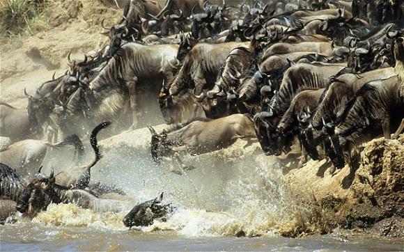 Büyük göç, Doğu Afrika