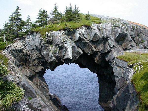 Berry Head Arch - Newfoundland / Kanada