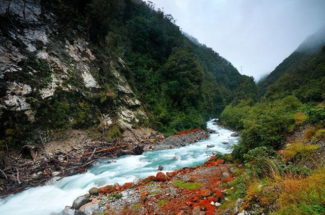 Yeni Zelanda