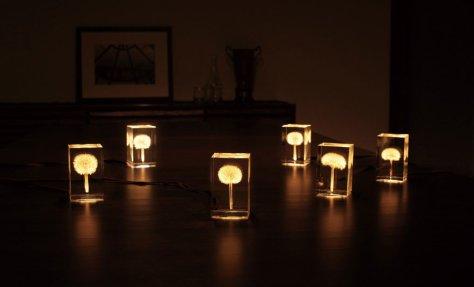 Karahindiba LED Lamba