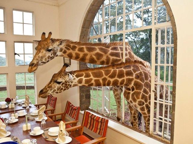 Kenya Butik Otel