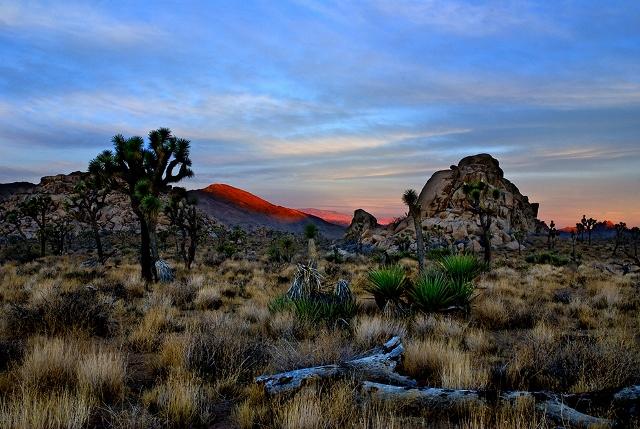 Yucca Vadisi Gündoğumu