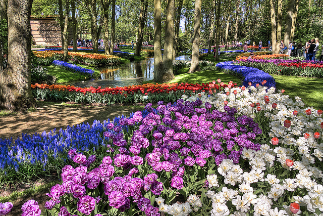 Hollanda Lale Bahçesi - Keukenhof Gardens