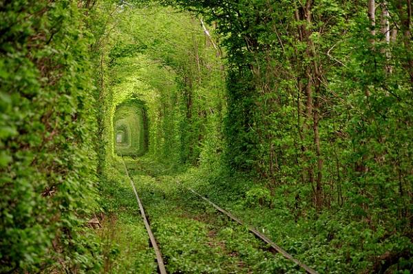 Aşk Tüneli - Kleven / Ukrayna